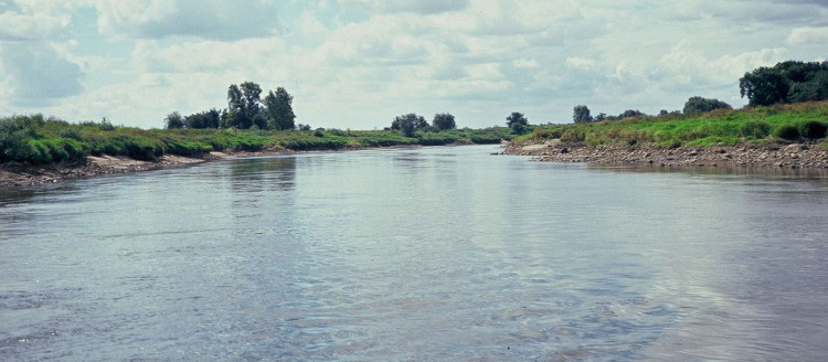 Wały przeciwpowodziowe Odry