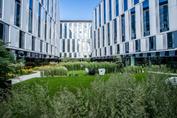 AFI V.Offices