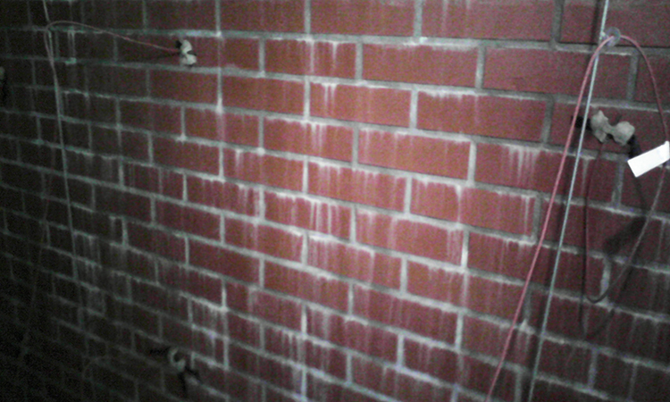 wykwity na murach
